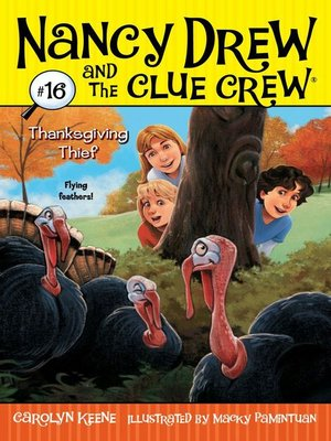 cover image of Thanksgiving Thief