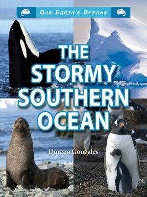 cover image of The Stormy Southern Ocean