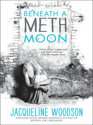 cover image of Beneath a Meth Moon