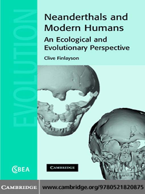 relationship of neanderthals to modern humans