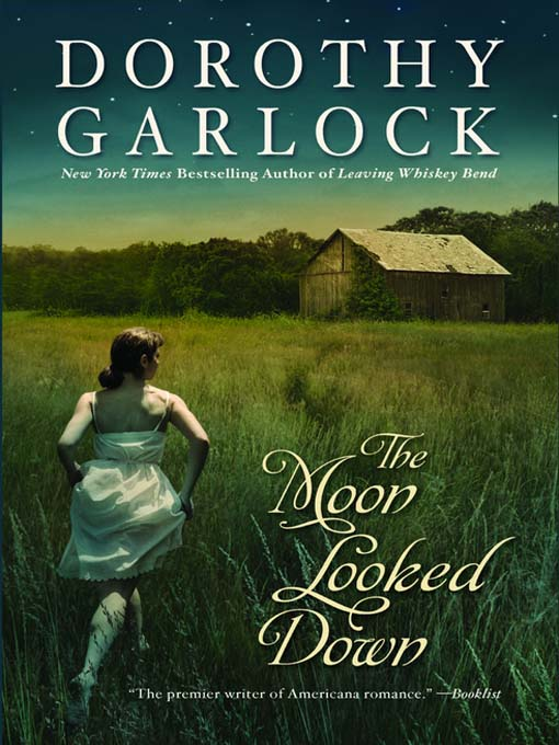 Title details for The Moon Looked Down by Dorothy Garlock - Wait list