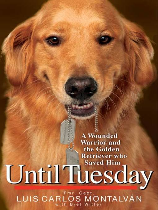 Title details for Until Tuesday by Bret Witter - Available