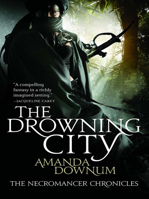 Title details for The Drowning City by Amanda Downum - Available