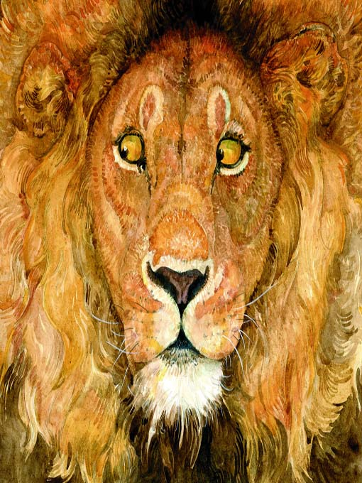 Title details for The Lion & the Mouse by Jerry Pinkney - Available