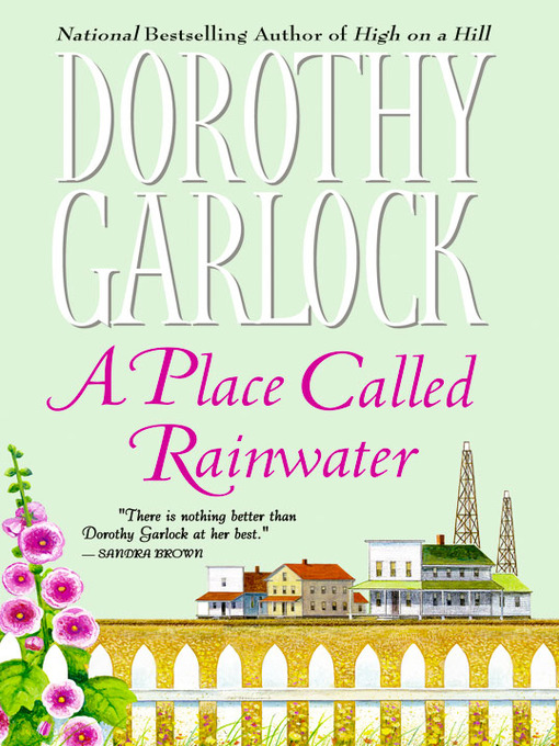 Title details for A Place Called Rainwater by Dorothy Garlock - Wait list