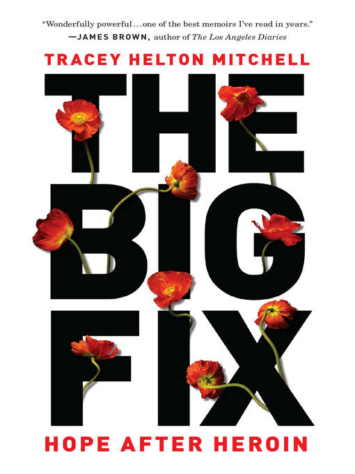 Title details for The Big Fix by Tracey Helton Mitchell - Available