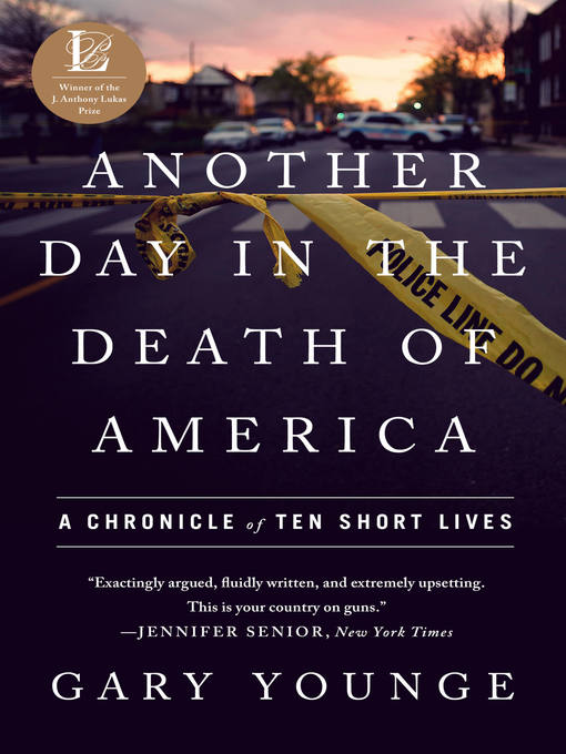 Cover of Another Day in the Death of America