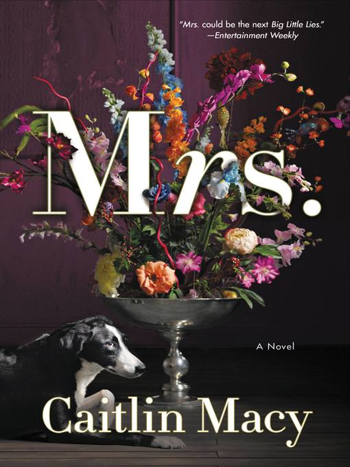 Title details for Mrs. by Caitlin Macy - Wait list
