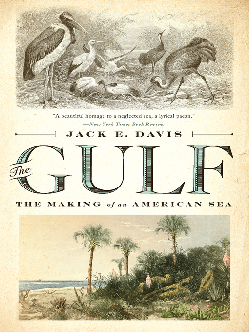 Title details for The Gulf by Jack E. Davis - Wait list