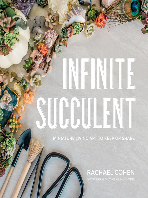 Infinite Succulent Miniature Living Art to Keep or Share