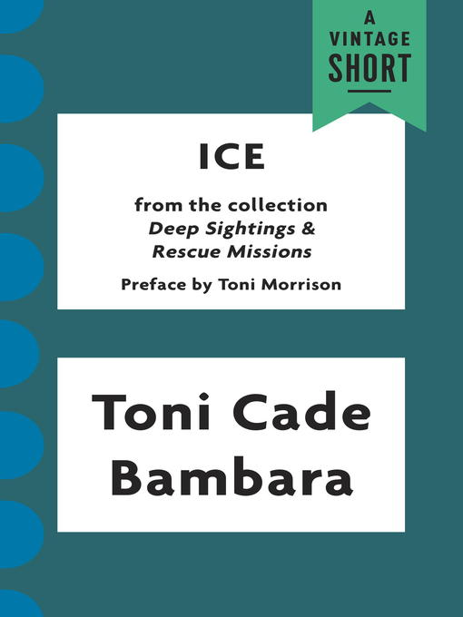 an analysis of the book the lesson by toni cade bambara Thus, toni cade bambara gives a very good lesson in her story the lesson which raises the issues of injustice in the society she manages to reveal this idea quite easily due to the choice of such techniques as narration composition pattern and specific writing style works cited.