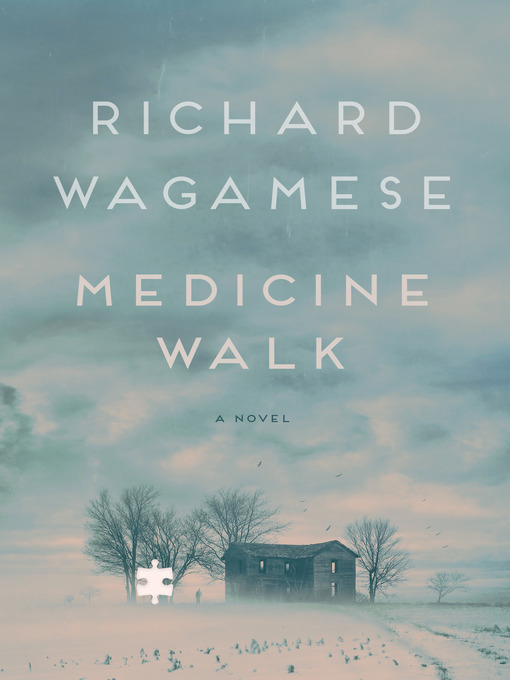 Cover of Medicine Walk