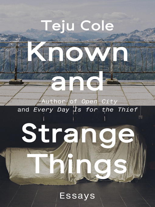 Known and Strange Things Essays