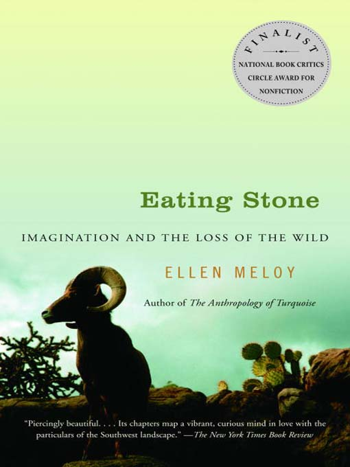 swallowing stones chapter review