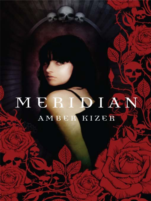 Title details for Meridian by Amber Kizer - Available