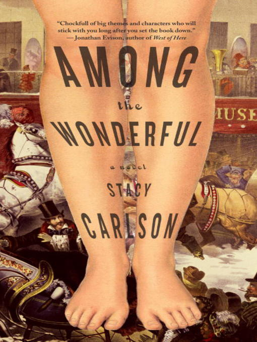 Title details for Among the Wonderful by Stacy Carlson - Wait list
