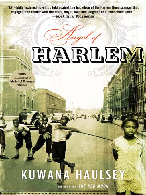 a history of harlem renaissance in united states