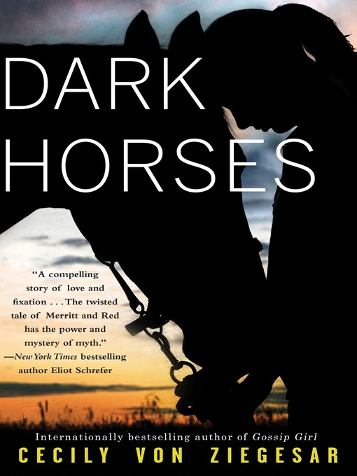 Cover image for Dark Horses