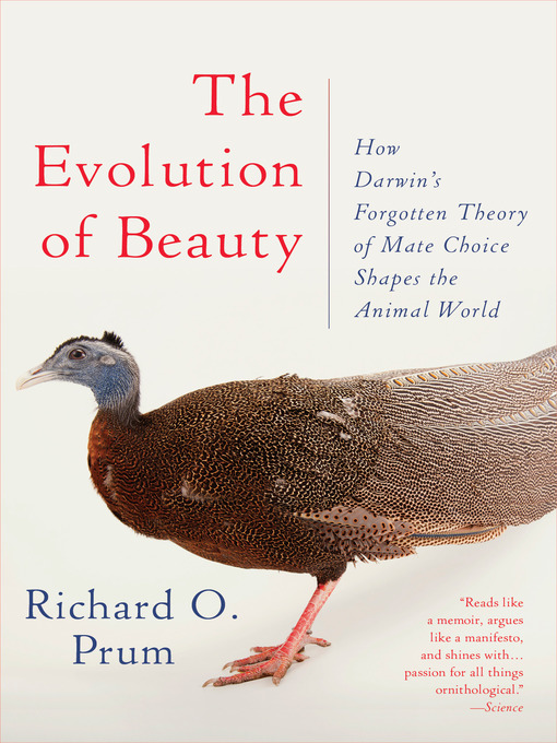 Cover of The Evolution of Beauty