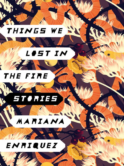 Things We Lost in the Fire Stories