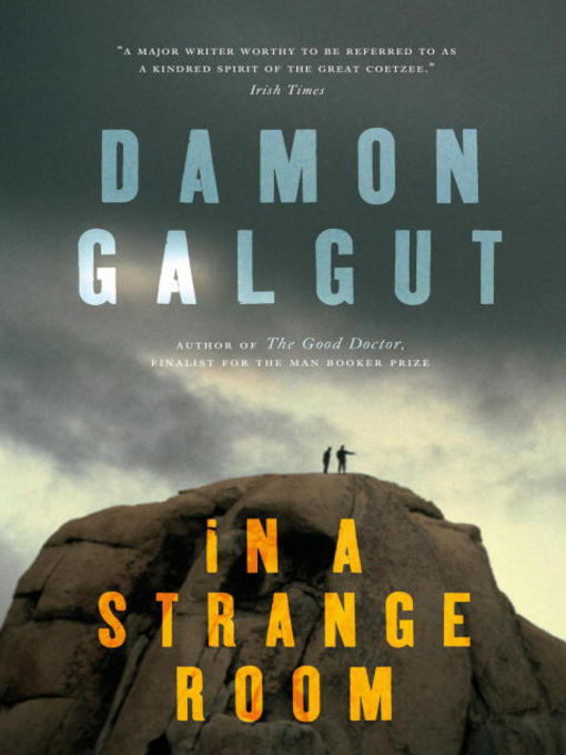 Title details for In a Strange Room by Damon Galgut - Available