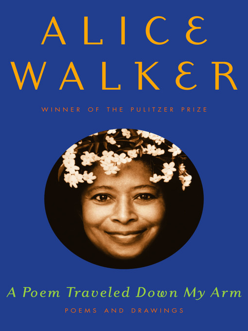 a portrait of family life in everyday use by alice walker