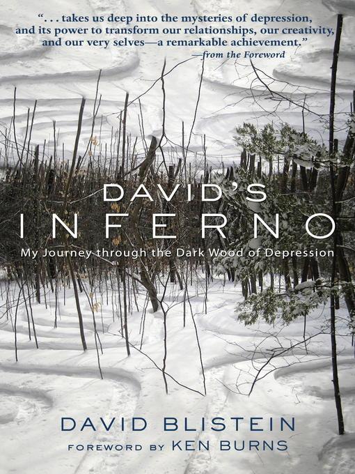 Title details for David's Inferno by David Blistein - Wait list