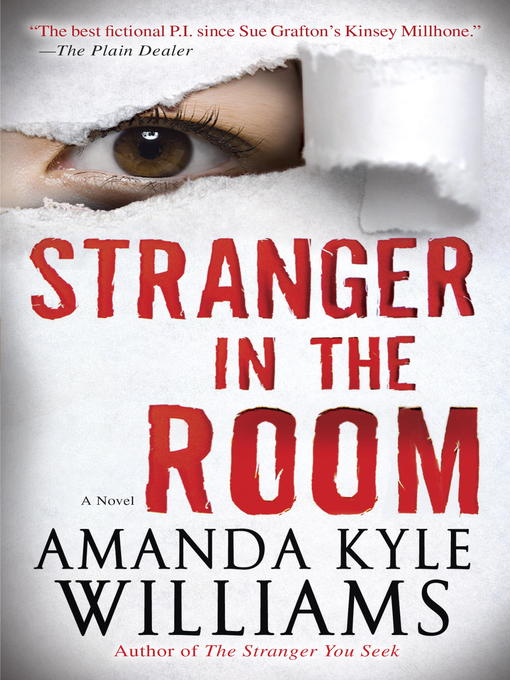 Title details for Stranger in the Room by Amanda Kyle Williams - Available