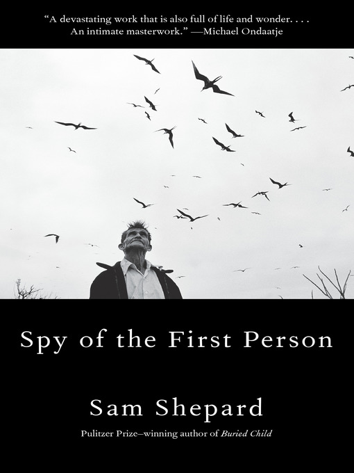 Cover of Spy of the First Person
