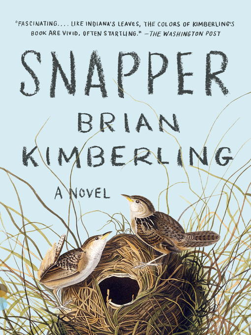 Title details for Snapper by Brian Kimberling - Wait list