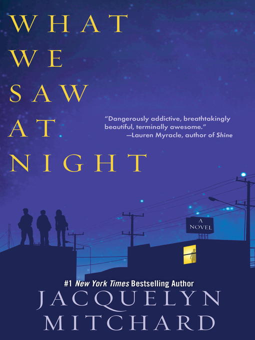 Title details for What We Saw at Night by Jacquelyn Mitchard - Available