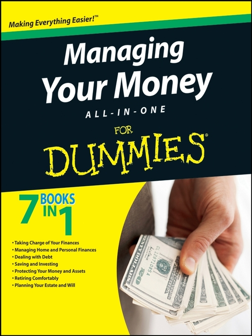 Auditing For Dummies Ebook