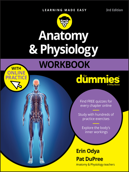 Anatomy And Physiology Workbook For Dummies Media On Demand