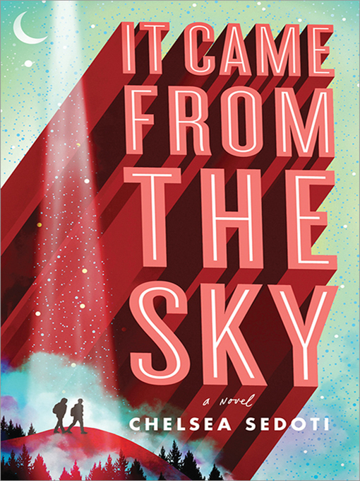 Cover image for book: It Came from the Sky