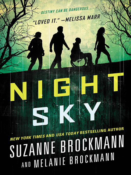 Title details for Night Sky Series, Book 1 by Suzanne Brockmann - Wait list