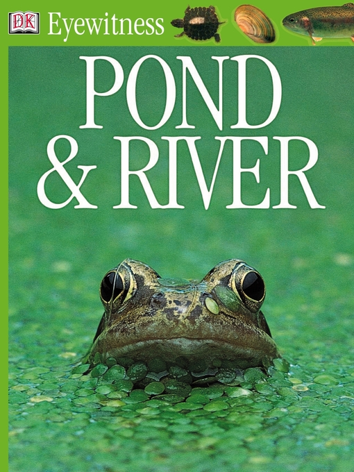 Title details for Pond and River by DK - Available