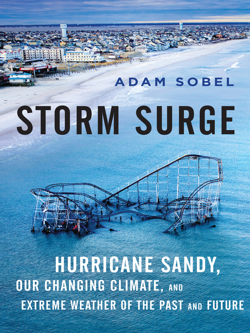 Title details for Storm Surge by Adam Sobel - Available