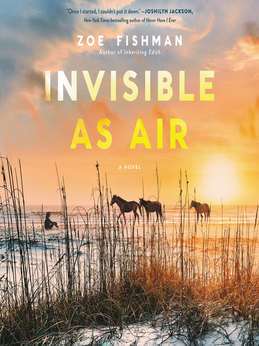 Title details for Invisible as Air by Zoe Fishman - Wait list