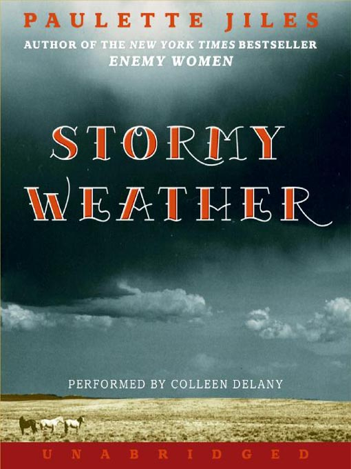 Stormy Weather For Public Libraries And >> Stormy Weather Austin Public Library Overdrive