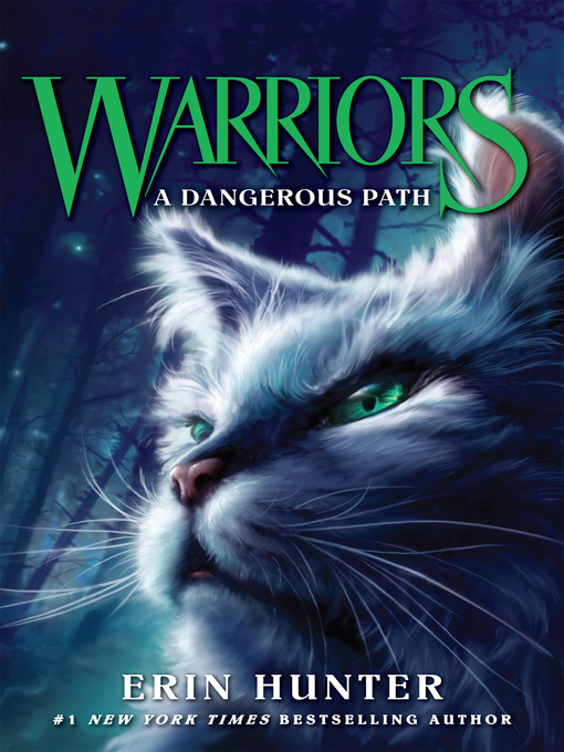 Cover of A Dangerous Path