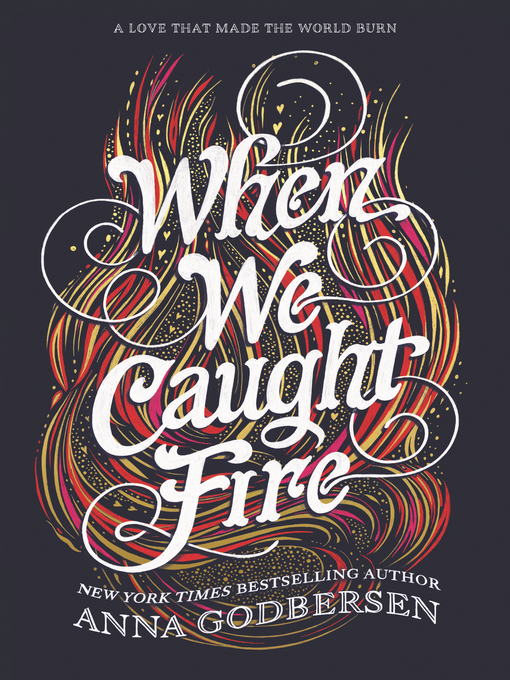 Cover of When We Caught Fire
