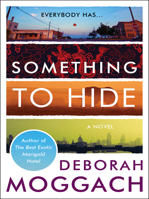 Cover of Something to Hide