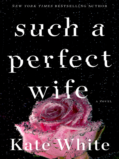 Such a perfect wife A novel