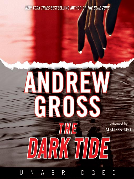 Title details for The Dark Tide by Andrew Gross - Available