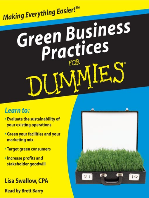 how to run a business for dummies