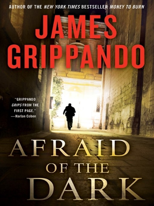 Title details for Afraid of the Dark by James Grippando - Wait list