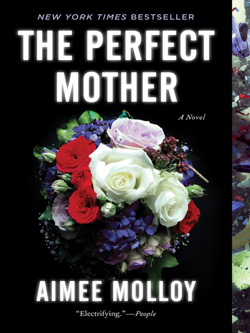 Title details for The Perfect Mother by Aimee Molloy - Wait list