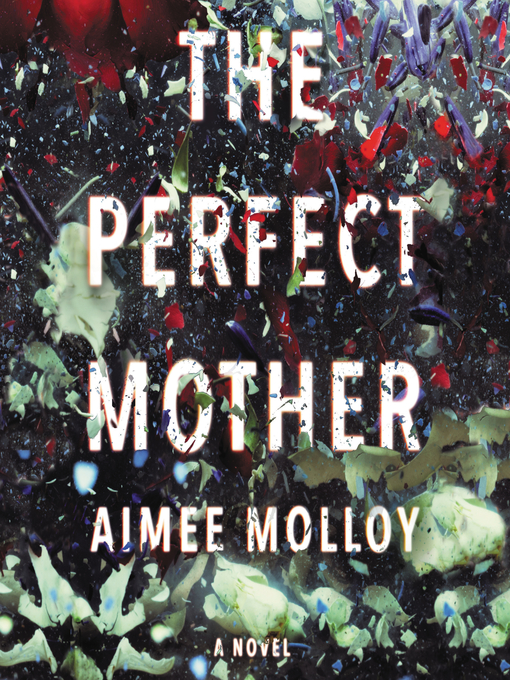 Title details for The Perfect Mother by Aimee Molloy - Available