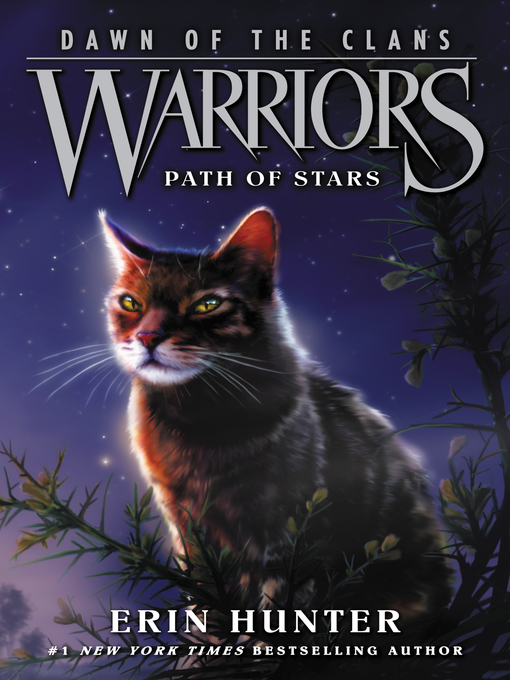 Title details for Path of Stars by Erin Hunter - Wait list