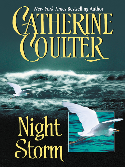 Title details for Night Storm by Catherine Coulter - Wait list